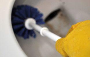 Graban a limpiadoras de hoteles de 5 estrellas fregando tazas con escobillas para el inodoro