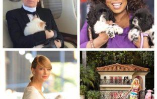 Mascotas de famosos que han heredado grandes fortunas