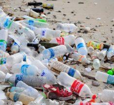 Instalan 16 puntos en Santo Domingo para depositar las botellas plásticas